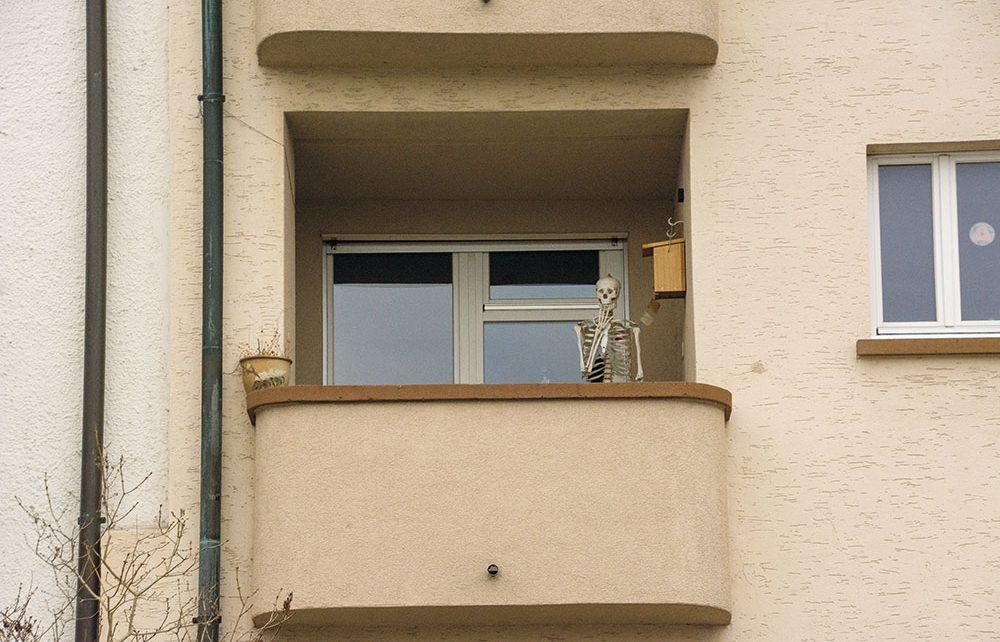 Huuch, was haben sie mich erschreckt! Das gehört sich doch nicht so unverschämt in fremde Balkone zu glotzen...