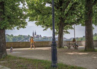 Ausruhen und den Blick über den Rhein schweifen lassen, und das mit einem kühlen Getränk als Zugabe? Wieso nicht?